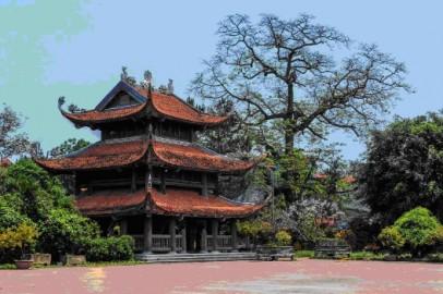 Mua rượu dừa ở đâu ngon và đảm bảo chất lượng tại Hưng Yên